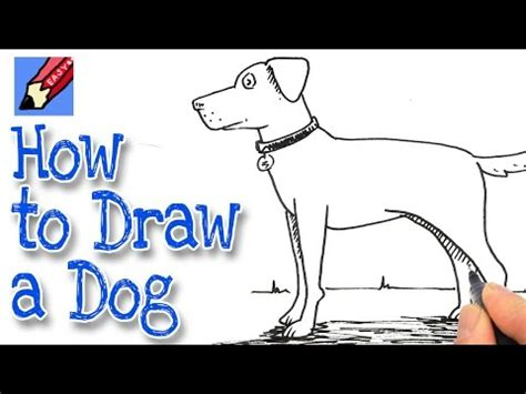 draw animals real easy youtube