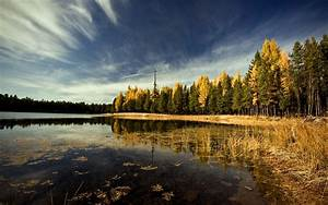 Landscape, Forest, Lake, Sky, Trees, Leaves, Wallpapers, Hd