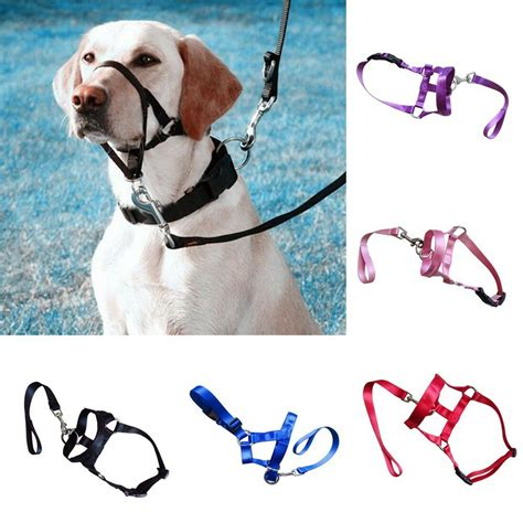 large pet dog head collar training dog halter harness