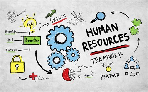 The 7 Habits Of Highly Effective Hr Professionals