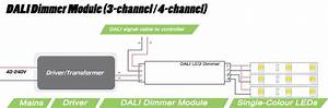 Multichannel Dali Dimmer Module