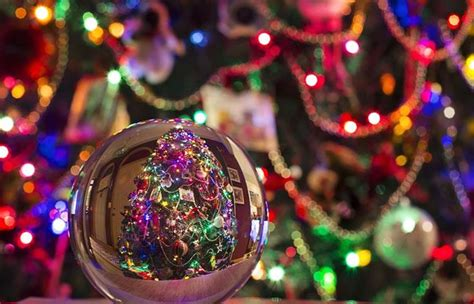 programming christmas lights 7 cosas que demuestran que lleg 243 la navidad