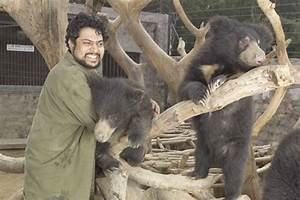 From, Elephants, To, Bears, This, Delhi, Ngo, Is, Rescuing