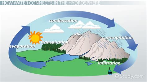 Psychology Career Diagram Of Sphere by What Is The Hydrosphere Definition Exles