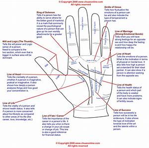 Palm History In India  Palm Reading Diagram Illustrated