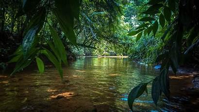 Sri Lanka Water Wallpapers Fresh Nature Stream