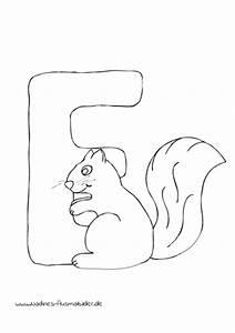 Tieralphabet ABC Buchstabe E Mit Freudigem Eichhrnchen