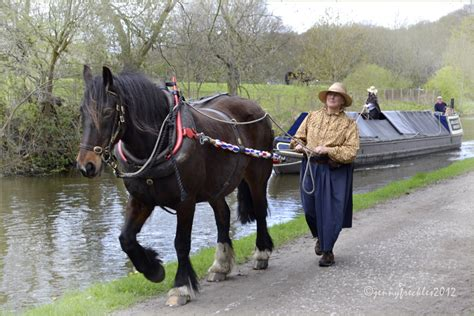 Horses On A Boat by Saltaire Daily Photo Boating