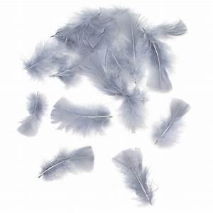 Grey Craft Feathers 5G Hobbycraft