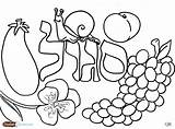 Coloring Pages Challah Crumbs Jewish Shabbos Hebrew Salad Fruit Books Sheets Tots Torah Printable Crafts Print Archives Colors Fun Purple sketch template
