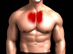 How To Work These Parts Of The Chest Muscles