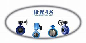 Manufacturer Double Flanged Butterfly Valve  View Wafers