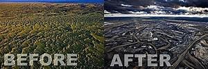 before-after-en.jpg 800×266 pixels   Deforestation before ...