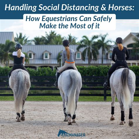 distancing social horses handling equestrians safely most emily horse featured