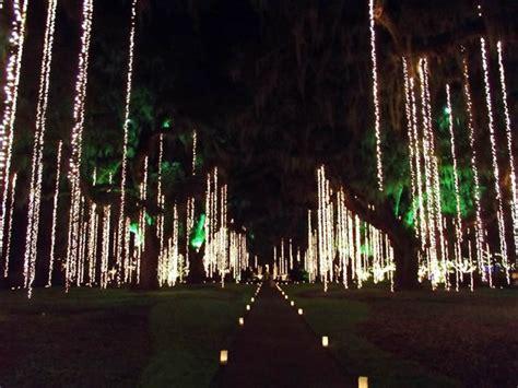 brookgreen gardens of a thousand candles oak allee nights of a thousand candles picture of Lovely