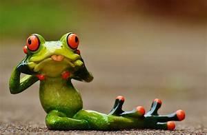Frosch Bilder Lustig : kostenloses foto frosch figur lustig frech kostenloses bild auf pixabay 1212220 ~ Whattoseeinmadrid.com Haus und Dekorationen