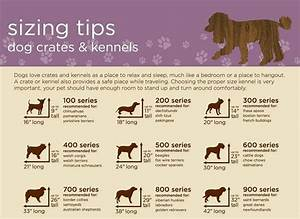 How to kennel train a puppy techniques and tips from the for Dog kennel size chart