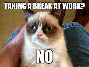 taking a break at work? no - AngryCat - quickmeme