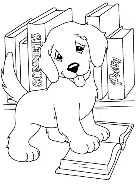 realistic puppy coloring pages   print