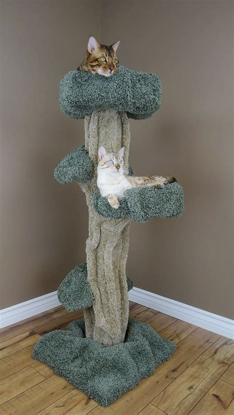 cat tree that looks like a tree 5 awesome cat trees that look like trees purrfect cat breeds