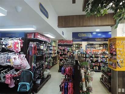 Pet Loja Fortaleza Animale Petbarn Warehouse Supplies