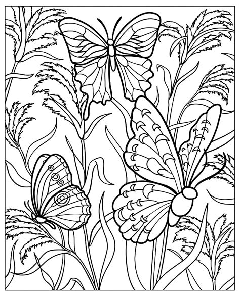 butterflies   green nature butterflies insects adult coloring pages
