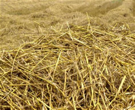 Stroh Als Dämmung by Stroh D 228 Mmung Agrar Aktuell De