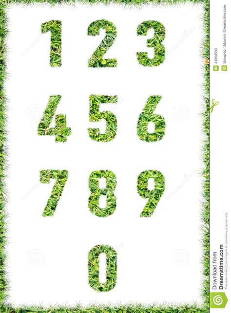 and numbers letter a made of grass stock green grass letter isolated stock image cartoondealer