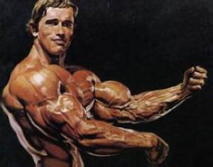 Arnold Bodybuilding Pictures  Wallpapers