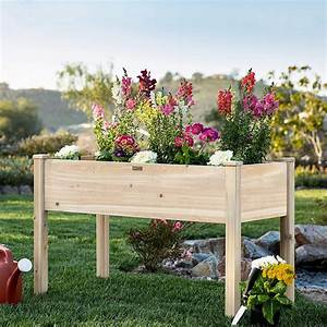 10, Ways, To, Grow, A, Great, Raised, Bed, Garden
