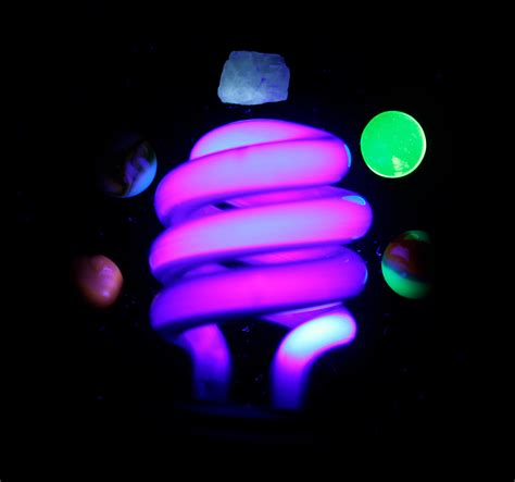 uv light blacklight bulb for standard bulb