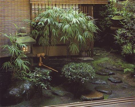 japanese garden plants gardens asian bamboo courtyard balcony japan rock plant landscape gardening homestrendy patio very typical acacia landscaping flowers