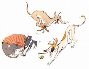 373 best Greyhound Whippet Digital Art Clip Art images on ...