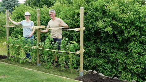 himbeer gestell bauen himbeerspalier bauen diy garden vegetable