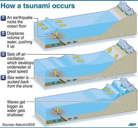 bureau de change com unique tsunami footage boon to scientists