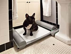 brilliantpad the worlds first self cleaning indoor dog With indoor dog bathroom