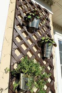 Lattice, Planter, Use, For, My, Herbs, Ivy, U0026, Flowers, On, The, Privacy, Fence, Next, To, Grill, On