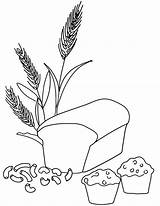 Coloring Wheat Bread Grains Grain Muffin Whole Printable Pasta Macaroni Colour Drawing Colouring Clipart Breads Template Muffins Loaf Kindergarten Harvest sketch template