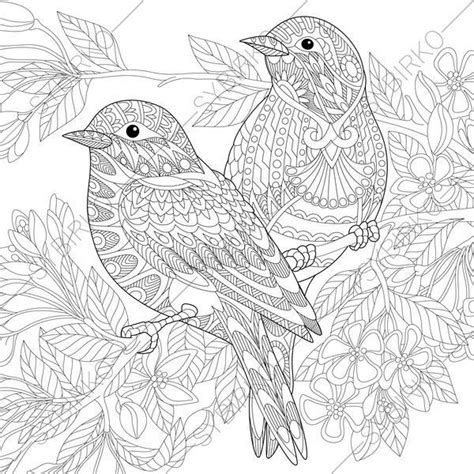 sparrow birds adult coloring book page zentangle doodle