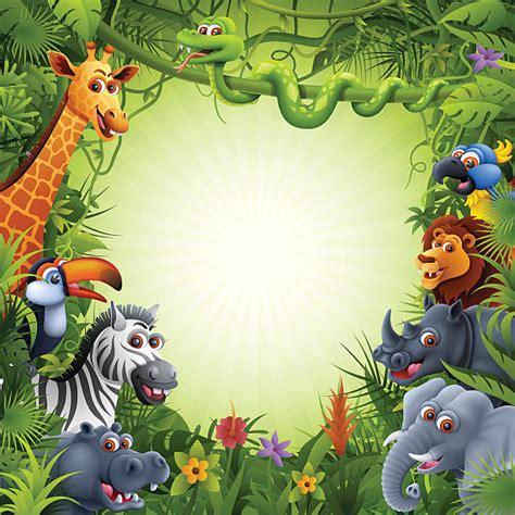 amazon rainforest illustrations royalty  vector