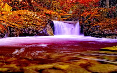 autumn forest falls nature waterfall