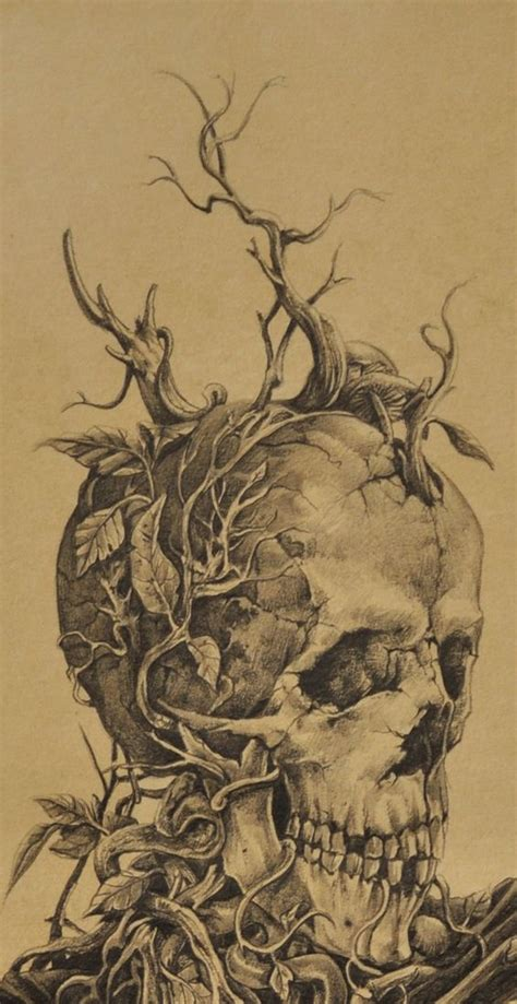 Drawing Death Pencil Skull Nature Butterfly Macabre