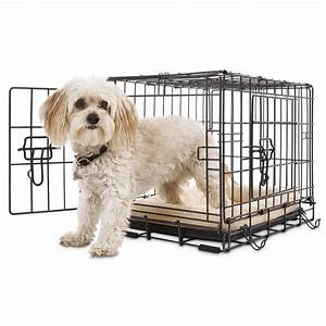 petco premium 2 door dog crates petco With dog cage for two dogs