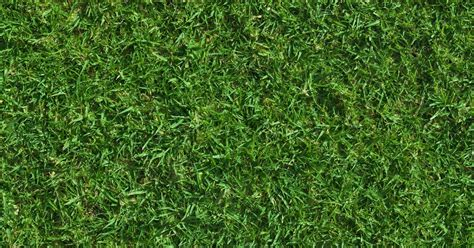high resolution textures green lush grass texture