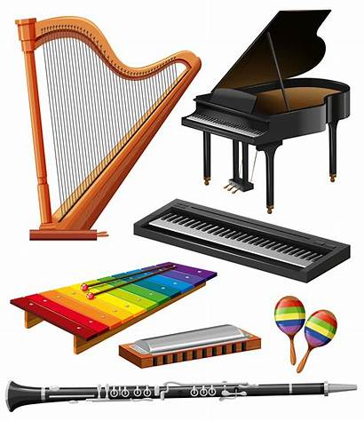 Instruments Musical Different Kind Vector Instrument Illustration