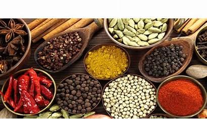 Spices Indian English Từ Lưu đa