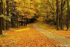 Classic Fall Color Photo Tips - Outdoor Photographer