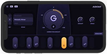 Pitch Correction Audio Pro Plugin Audiokit Device