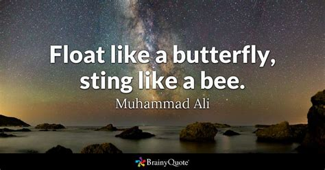 float   butterfly sting   bee muhammad ali