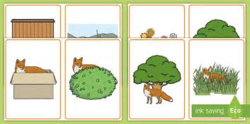 fox positional language picture cards